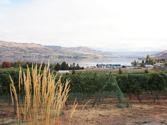 View of Lake Chelan, WA in the fall