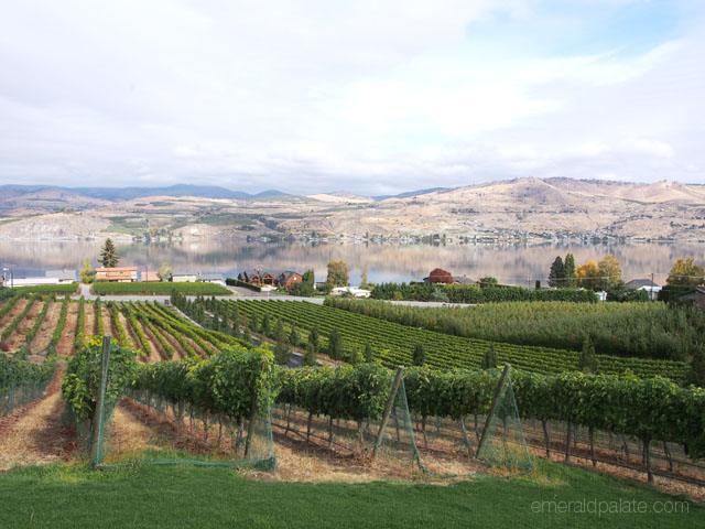 View of Lake Chelan, WA from Nefarious Cellars