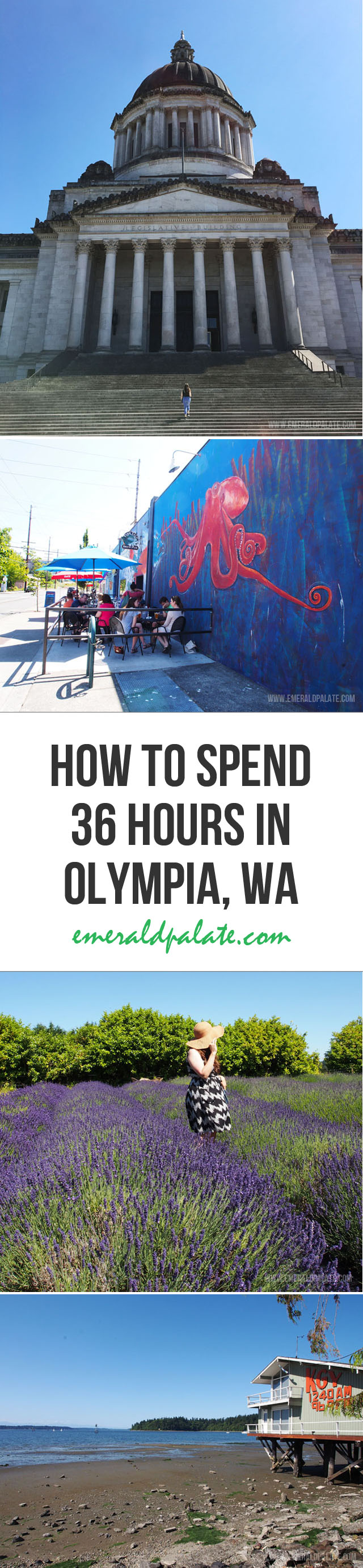 8 ideas for traveling to Olympia WA. It is more than just the Washington state capital. It is a biker friendly city that loves beer, hiking, and local farms.