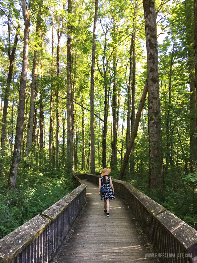 Billy Frank Jr Nisqually Wildlife Reserve near Olympia WA has a ton of boardwalk hikes perfect for the whole family