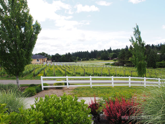 Adam Bench is a family owned winery near Seattle. This is the owners yard! So quaint! Which makes it one of my favorite Woodinville wineries.