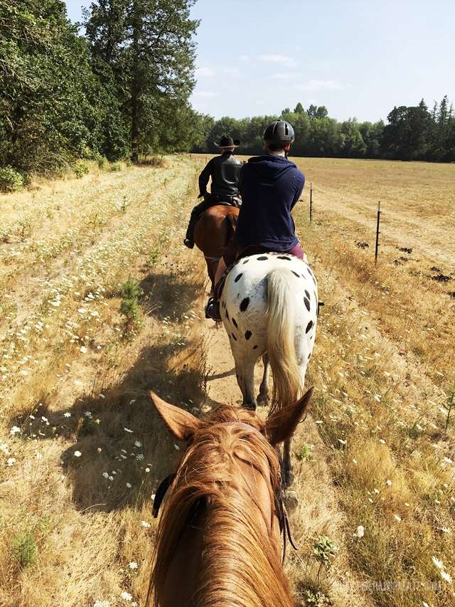 We went horseback riding in between winery visits in Willamette Valley Oregon and had an amazing time!
