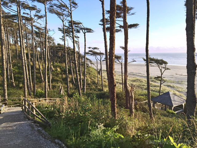 9 Things To Do In Seabrook Wa A Quaint Beach Town